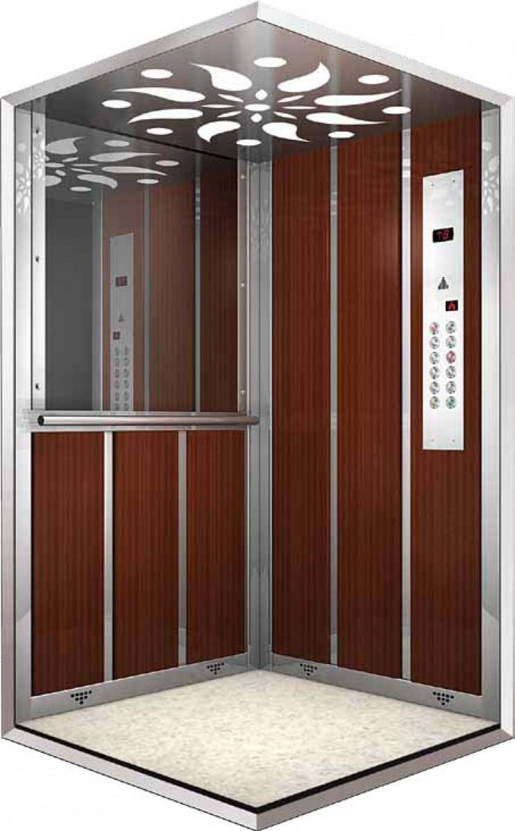 cabine c 13 dalmas ascenseurs. Black Bedroom Furniture Sets. Home Design Ideas